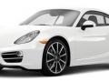 Carrera White Metallic.jpg